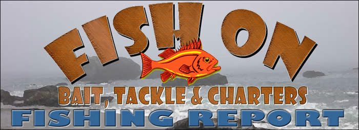 Fish on bait tackle charters fishing report for Bodega bay fishing reports